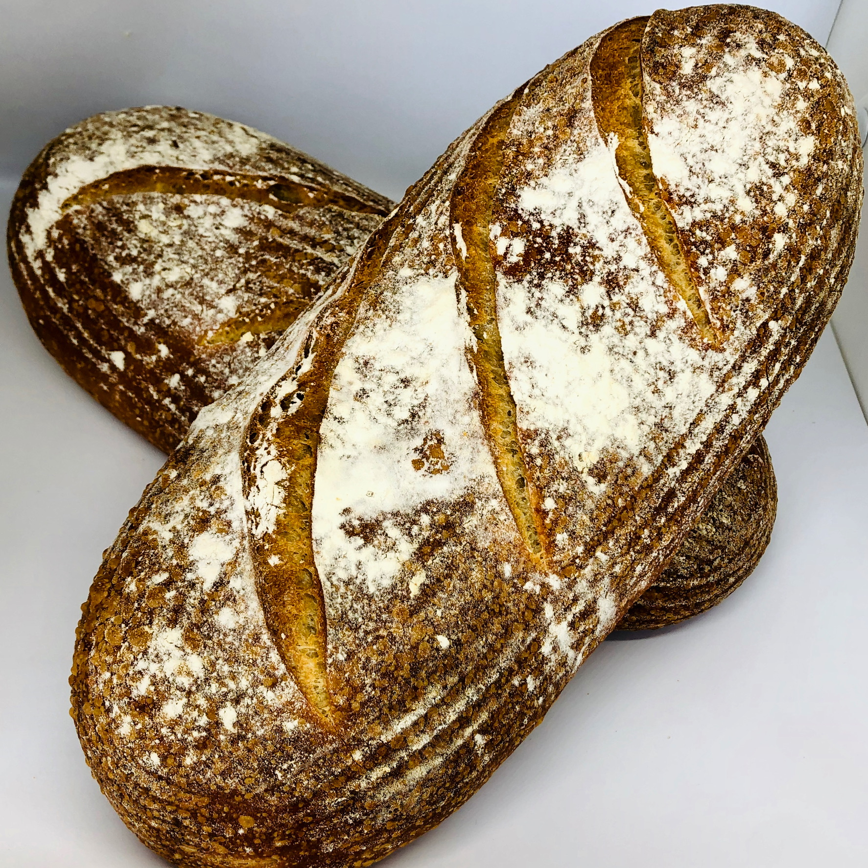 The Meat Room Sour Dough Bread